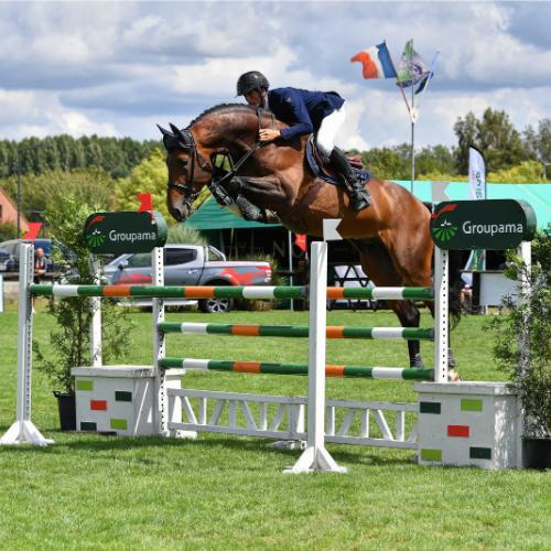 Spieren paard supplement Horsup Company