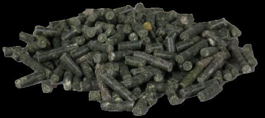 Groei Algen Spirulina